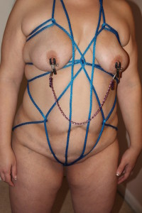 little flower in the harness and nipple clamps